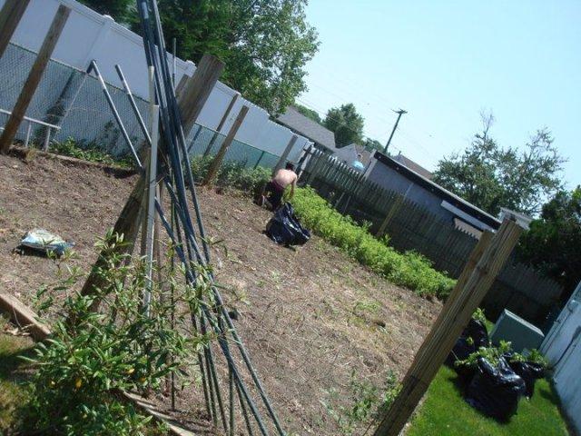 gardening in NJ
